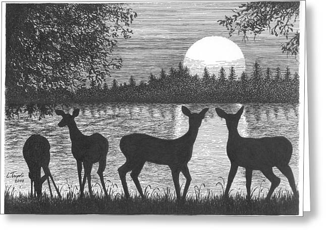 Deer At Dusk Greeting Card by Lawrence Tripoli