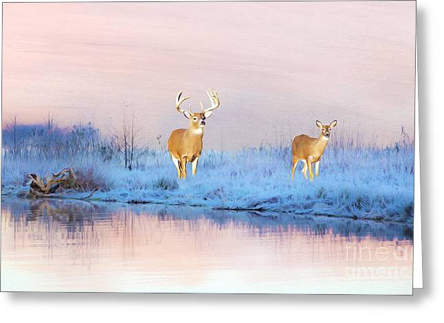 Deer At Winter Pond Greeting Card