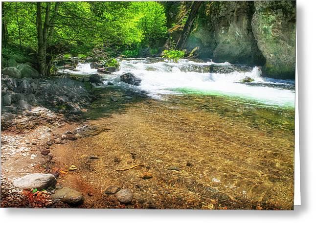 Deer Creek Trout Pool Greeting Card