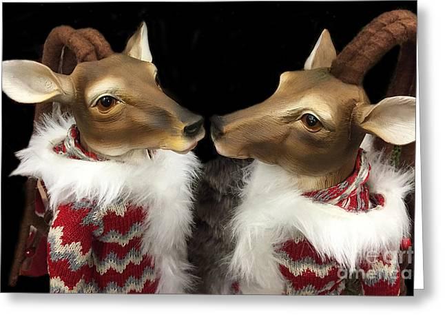 Deer Reindeer Kissing - Christmas Holiday Deer - Reindeer Deer Holiday Art Greeting Card