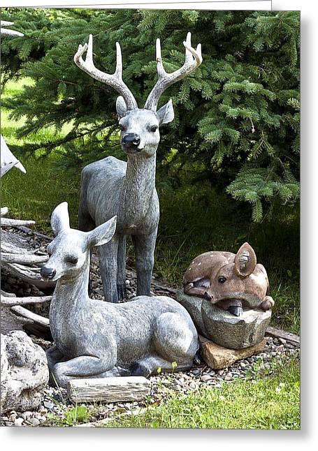 Deer Three Greeting Card by Sandra Foster