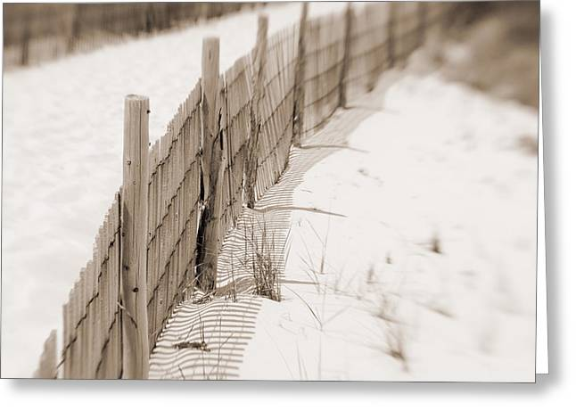 Delaware Dunes Number Eight  Greeting Card