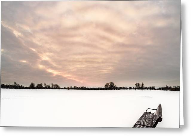 Delaware Park Winter Solace Greeting Card by Chris Bordeleau