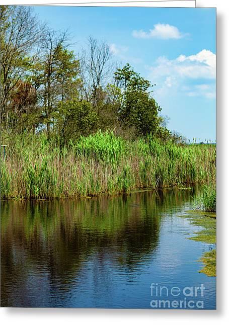 Delaware Waterway Greeting Card