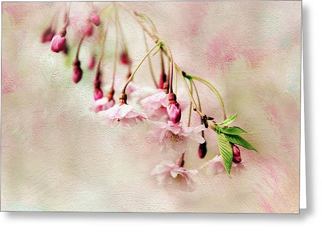 Delicate Bloom Greeting Card by Jessica Jenney