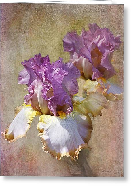 Delicate Gold And Lavender Iris Greeting Card