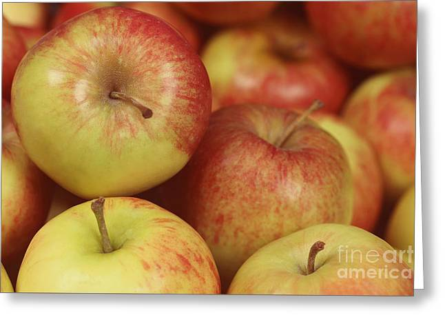 Delicious Apple Fruit Background Greeting Card