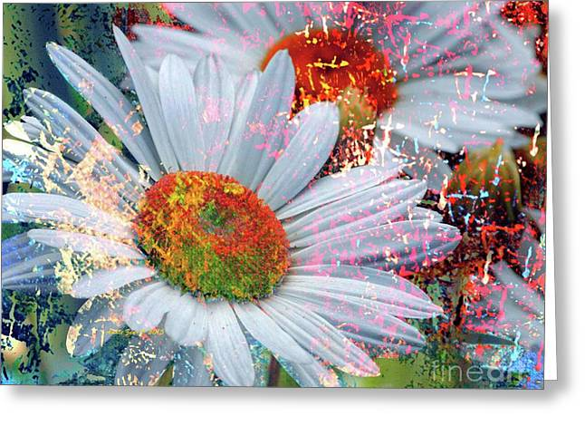 Delightful Daisies Greeting Card