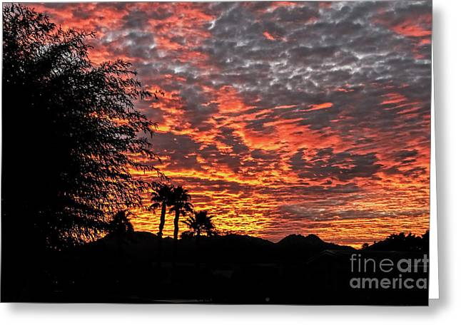 Greeting Card featuring the photograph Delightful Evening by Robert Bales