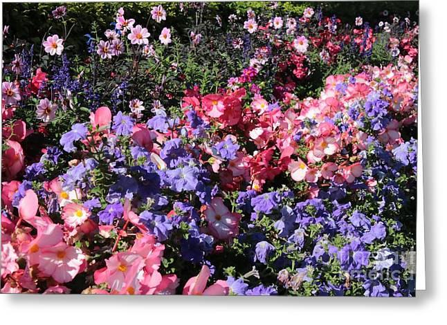Delightful Flower Garden Greeting Card