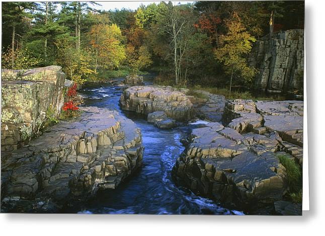 Dells Of The Eau Claire Greeting Card by Peter Skiba