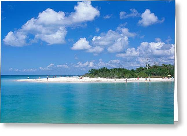 Delnor Wiggins State Park, Florida, Usa Greeting Card