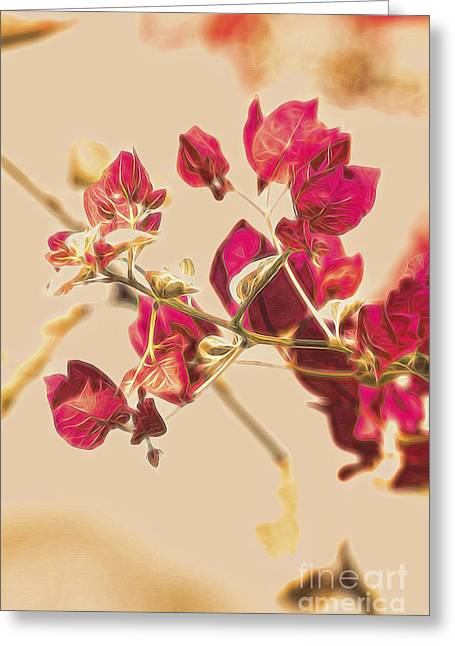Delonix Regia Fine Art Greeting Card by Jorgo Photography - Wall Art Gallery