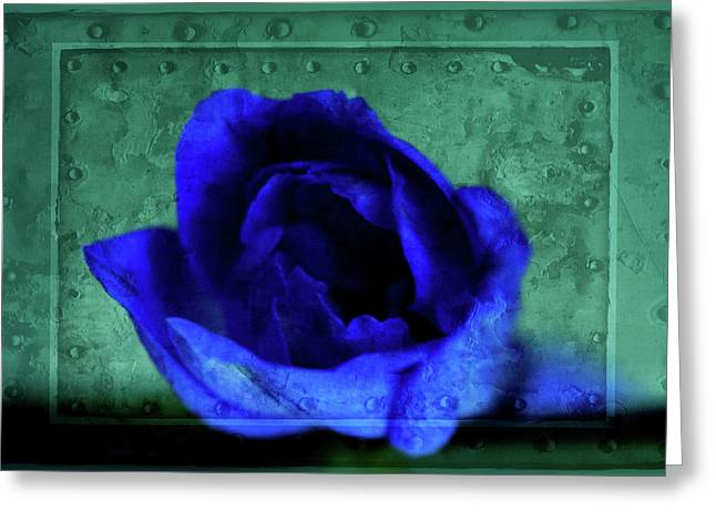 Pacific Northwest Mixed Media Greeting Cards - Delphinium Greeting Card by Bonnie Bruno