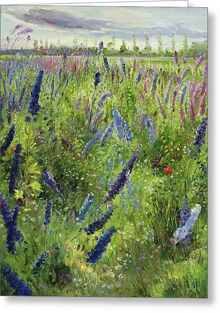 Delphiniums And Emerging Sun Greeting Card by Timothy Easton