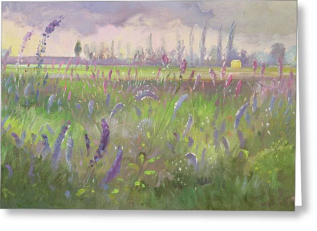 Delphiniums, Storm Passing Greeting Card by Timothy Easton