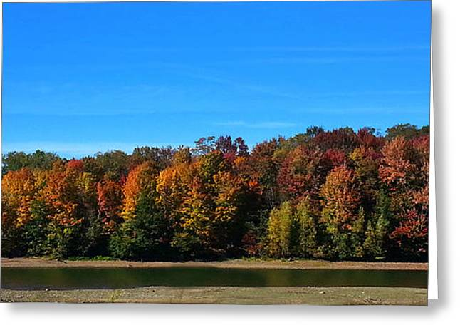 Delta Lake State Park Foliage Greeting Card by Diane E Berry