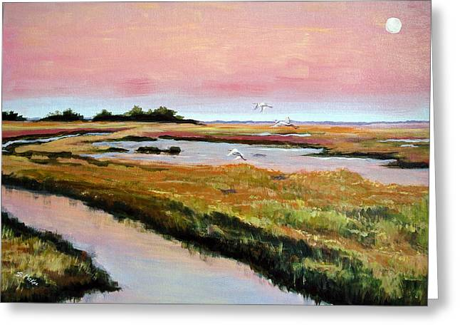 Delta Sunrise Greeting Card by Suzanne McKee