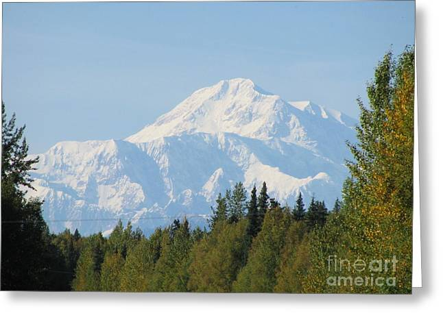 Denali Framed By Trees Greeting Card