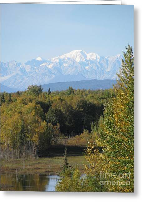 Denali In The Distance Greeting Card