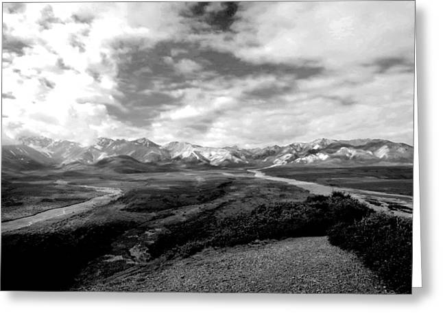Denali National Park 4 Greeting Card