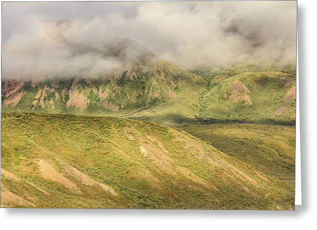 Denali National Park Mountain Under Clouds Greeting Card