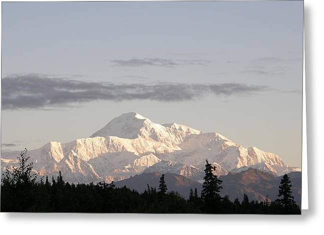 Greeting Card featuring the photograph Denali Photo by Judy Mercer