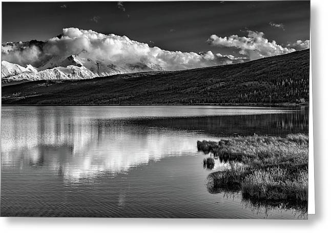 Denali Reflections In Black And White Greeting Card by Rick Berk