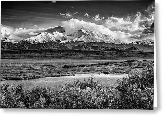 Denali, The High One In Black And White Greeting Card