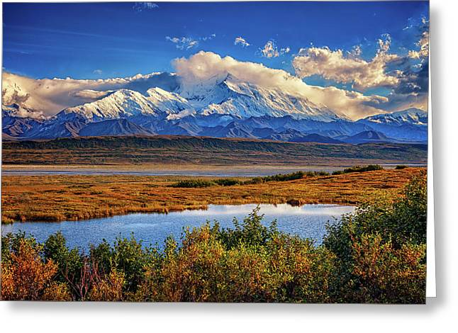 Denali, The High One Greeting Card
