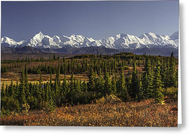 Denali Tundra Greeting Card