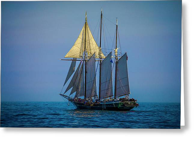 Denis Sullivan - Three Masted Schooner Greeting Card