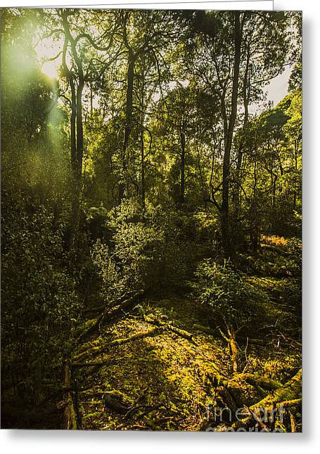 Dense Green Tropical Forest Greeting Card by Jorgo Photography - Wall Art Gallery