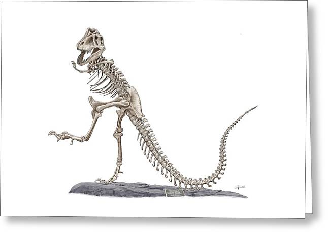 Denvers Dancing T Rex Greeting Card