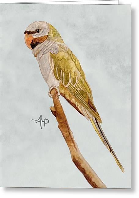 Derbyan Parakeet Greeting Card
