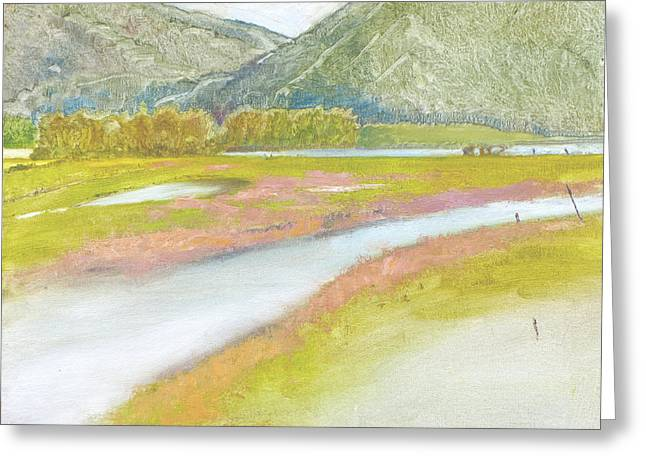 Derr Mountain Marshes Greeting Card by Robert Bissett