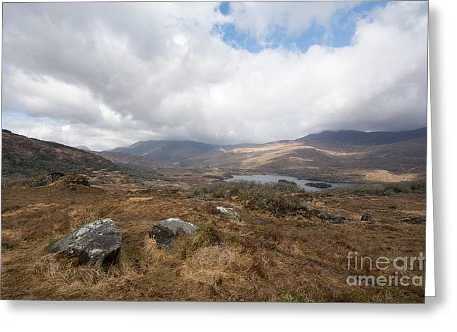 Derrynablunnago, Ireland Greeting Card by Nichola Denny