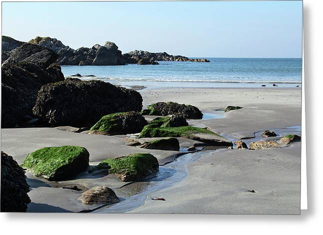 Derrynane Beach Greeting Card by Marie Leslie
