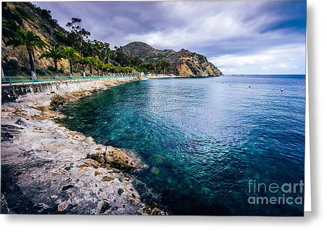Descanso Bay Catalina Island Picture Greeting Card by Paul Velgos