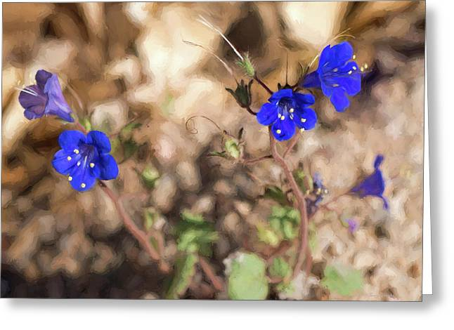 Greeting Card featuring the photograph Desert Blue Bells At Joshua Tree National Park by Penny Lisowski