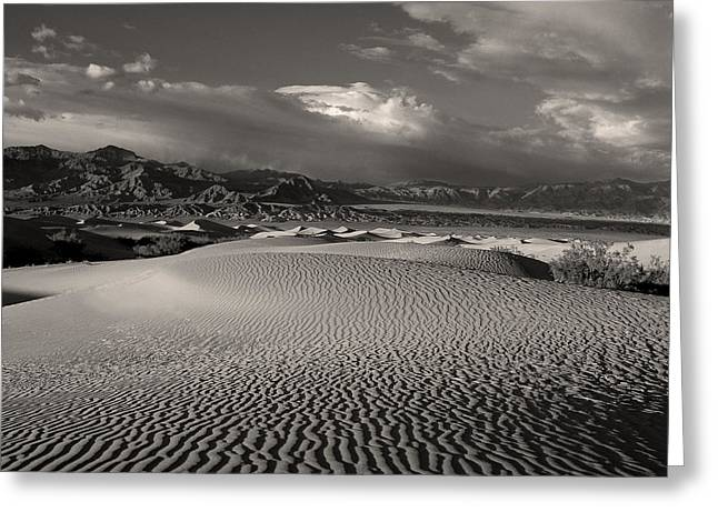 Desert Dunes Greeting Card by Gary Cloud