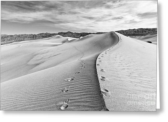 Desert Feet Greeting Card by Jamie Pham