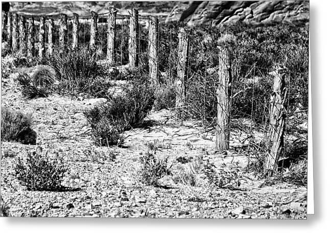 Desert Fence Greeting Card by Bob Coates