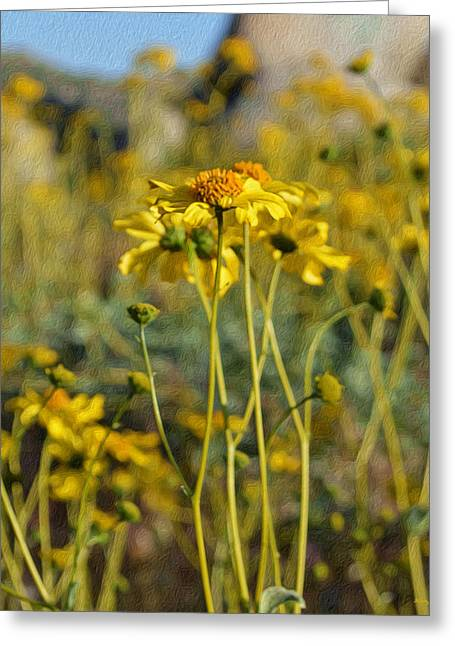 Desert Flower Impressions One - Wild Sunflowers Greeting Card