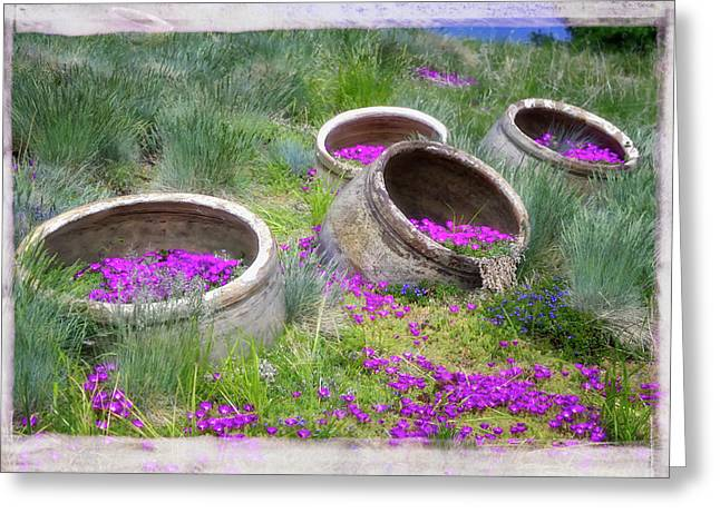 Desert Flowers Greeting Card by Joan Carroll