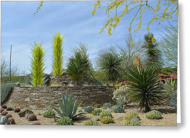 Desert Garden Greeting Card by Aimee L Maher Photography and Art Visit ALMGallerydotcom
