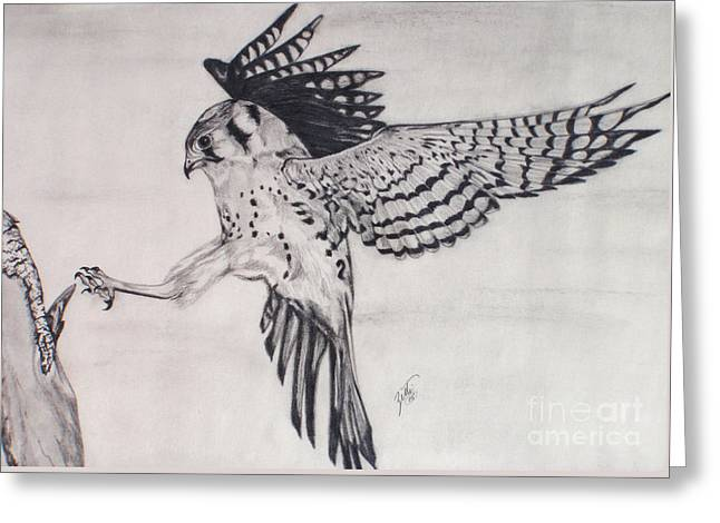 Falcon I Greeting Card