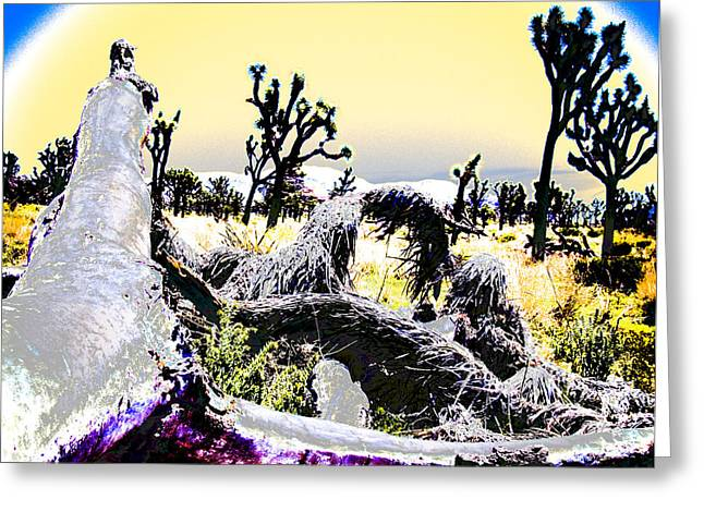 Desert Landscape - Joshua Tree National Monment Greeting Card by Ann Tracy