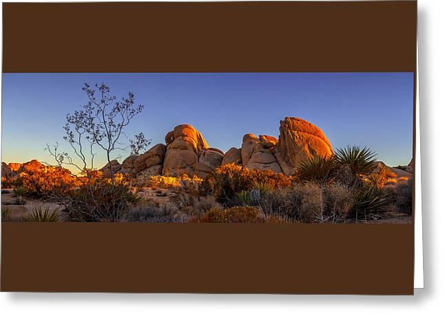Desert Light Greeting Card