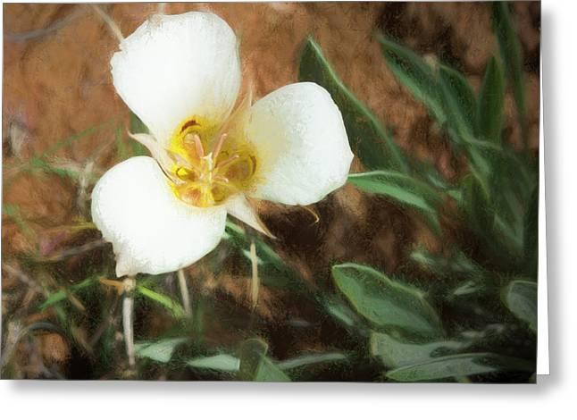 Greeting Card featuring the painting Desert Mariposa Lily by Penny Lisowski